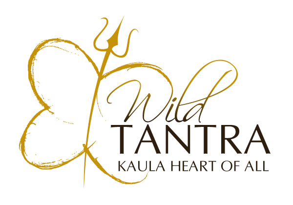 Wild Tantra Fun From India can not